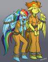Rainbowdash and Spitfire
